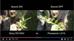 Sony RX100 V vs Panasonic LX10