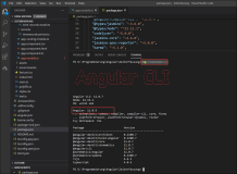 Angular Version prüfen